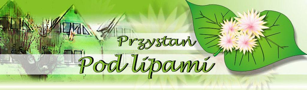 http://kwiatkrz.nazwa.pl/instalator/wordpressprzystan/wp-content/uploads/2015/06/przystan1.jpg